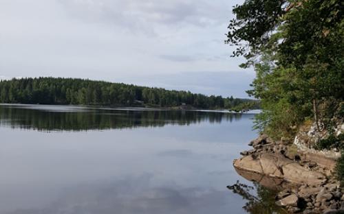 Badviken2