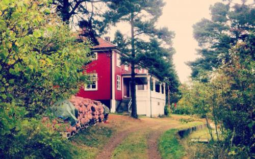 Solrabben en septemberdag i 2013. Foto : Cecilie Lund